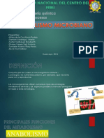 Metabolismo-microbiano