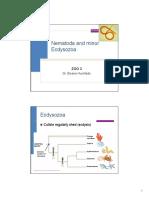 Z3-Nematoda.pdf