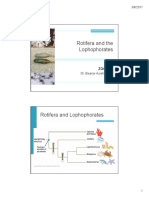 Z3-Gnathifera and the Lophophorates.pdf