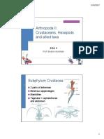 Z3-Arthropoda II.pdf