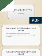 POPULASI GENETIK