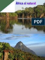 Africa Al Natural 15.8