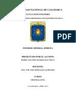 Informe Mineral Epidota