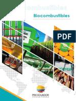 Biocombustibles ecuador.pdf