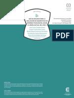 Guia de Docencia Para La Realizacion de Informes Psicologicos Dsm V