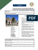 Censo Económico 2008 Huancavelica