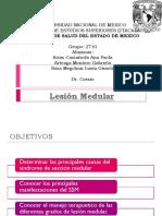 Lesión Medular Expo