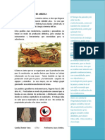 Informe Periodistico Cs Sociales