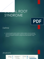 Dorsal Root Syndrome Slide