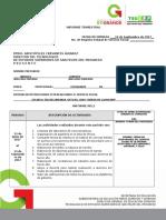 informe-trimestralnancy