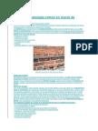 Defectos y Patología Común en Muros de Mampostería