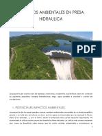 IMPACTOS AMBIENTALES PARA UNA PRESA HIDRAULICA.docx