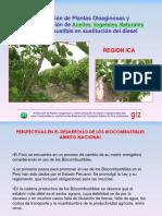 Annex 2 Ocucaje Peru