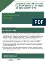 PPT DE INVESTIGACION-FORMATIVA-DE-LA-CRUZ-IBARCENA-MUÑOZ-ESTRADA-LUNES-7-11--PARAMETROS-GENETICOS-DE-CARACTERES-DE-IMPORTANCIA-ECONOMICA-EN-CONEJOS.-ESTRATEGIAS-DE-SELECCÓN-Y-SUS-RESULTADOS.pptx