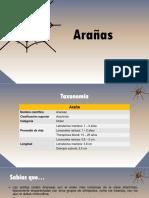 taxonomia_de arañas.pdf