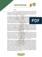 El Sistema Penitenciario Peruano.docx