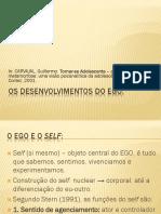 4. Os Desenvolvimentos Do EGO