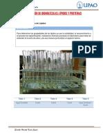 Practica 2-Lipidos y Proteínas