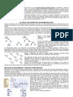 Biomoléculas. Biología 54. CBC UBA