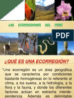 101898730-PPT-ECORREGIONES