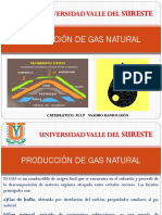 PRODUCCIÓN DE GAS NATURAL.pptx