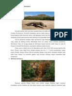 Jenis Jenis Fauna Di Indonesia
