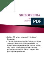 skizofrenia UMSU 2014