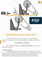 C.- DETERMINACIÓN DEL WORD INDEX.pdf