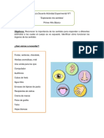 Guía Docente Actividad Experimental NB1 Sentidos