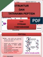 ppt peptida