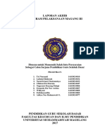 Laporan Magang III PGSD