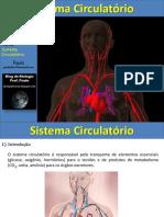 Sist Circulatorio