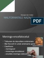 MALFORMATII NAZALE