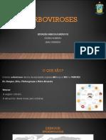 5-ARBOVIROSES
