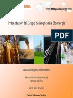 Vision Del Negocio Del Bioetanol
