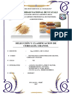 Selección y Clasificación de Cereales, Granos.