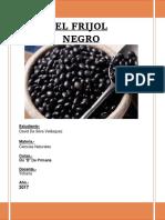 El Frijol Negro Monografia 2017
