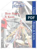 BSM 2009 Chapter6-BasicRopesKnots