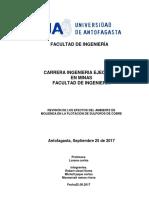 Efectos Del Ambiente de Molienda en La Flotación(Informe)