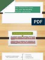 Ley Municipal Listo (1)