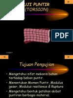 11_Puntir