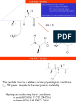 THE PROTEASES.pdf