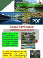 AREAS NATURALES DEL PERU-UNSM.pptx