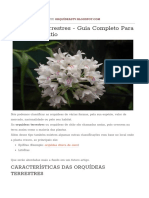 Orquídeas Terrestres