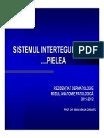 rezidentiat_dermato_04_final.pdf