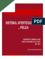 rezidentiat_dermato_03_final.pdf