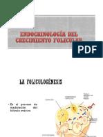 Endocrinologia Del Crecimeinto Folicular y Ovulacion