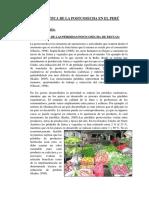 Problemática de La Postcosecha en El Perú