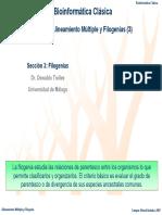 Filogenia Molecular