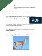 Fauna de La Serranía Esteparia